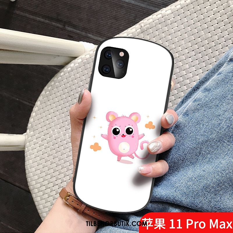 iPhone 11 Pro Max Etui Smuk Omgang Glas Cartoon Net Red Billige